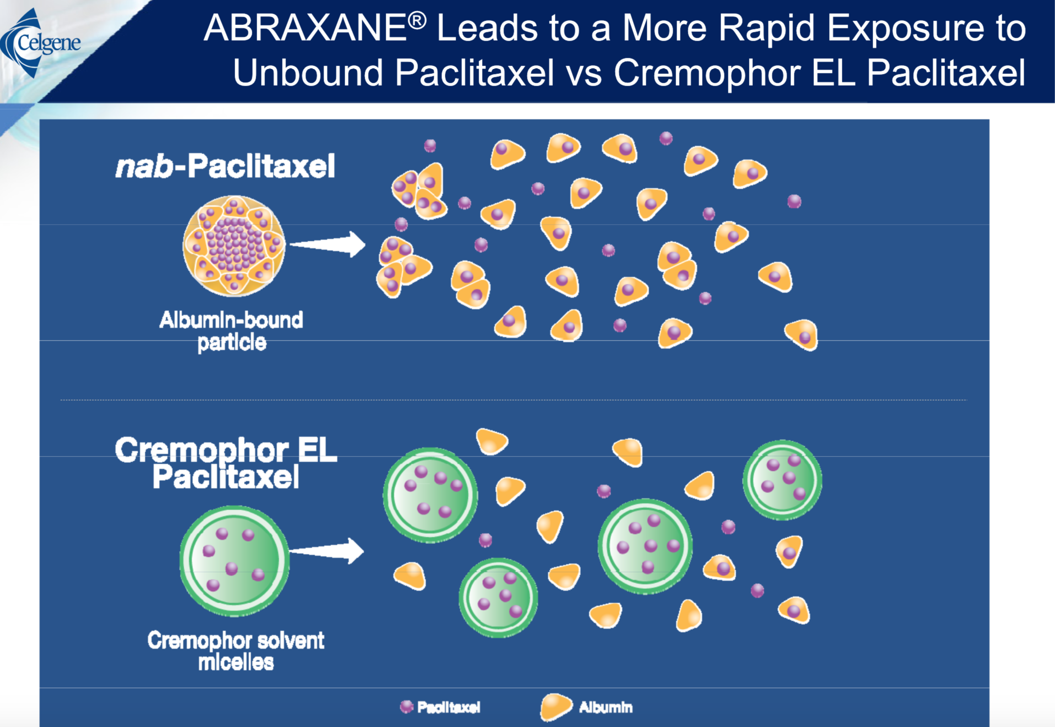Paclitaxel Nano-Delivery Systems: A Comprehensive Review